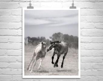 Horse Art Print, Galloping Horse, Horse Photography, Equestrian Art, Ranch Art, Equine Art, Wild Horses Photo, Western Picture, Arizona