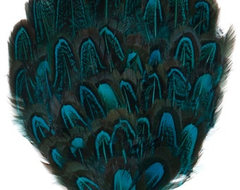 One Package Pheasant Feather Pad - Turquoise 8cm-10cm (1004H)