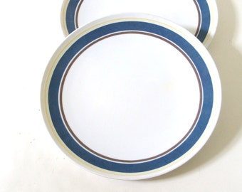 2 Vintage 1980's Blue and White Plastic Plates