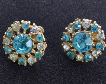 Pretty Vintage Light Blue, Clear Floral Rhinestone Screw back Earrings (AO12)