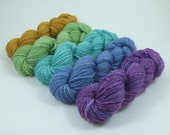 INVENTORY SPECIAL - 100g Gradient Set - Pounce 2ply BFL Fingering - Purple Ash
