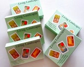 6 Educational Card Games Living Landscapes Card Games - Bulk Order for 6 Games - Permaculture Gift