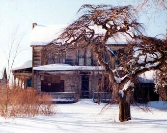 Tree Photography, Tree Poster, Winter Landscape, Wall art, Home Decor, Wall Decor, Lone Tree Art Print, fine art prints