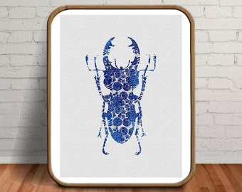 Unique Wall Art, Beautiful Creatures, Blue Beetle Prints, Curiosities and Oddities, Unique Gifts for Men, Unique Gifts, Botanical Prints