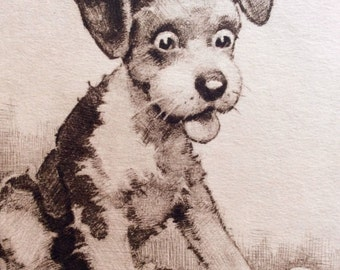 Surprised Puppy with Chick Pal, Vintage Dry Point Etching by J. Knowles Hare