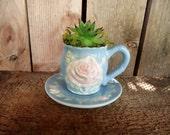 Blue  Rose Mini Succulent Tea Cup Garden Arrangement