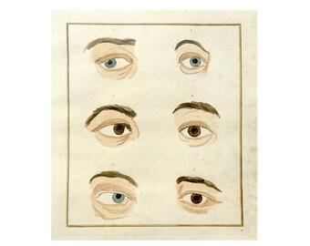 c. 1774 EYE ANATOMY ENGRAVING - original antique print - antique hand colored human anatomy engraving - physiognomy eyes ophthalmology no. 1
