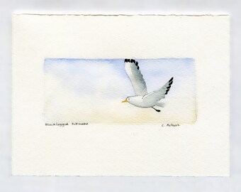 Original Seagull Painting Fine Art Card For Sale - Beach Artwork