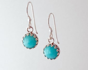 Round Amazonite Stone Bright Silver Earrings