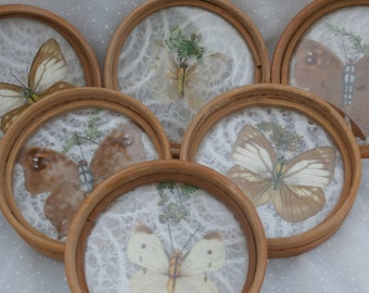6 Vintage Butterfly Coasters