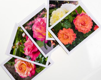 Rose note card set. Set of 5 photo cards blank inside.  Each card shows a different photograph.