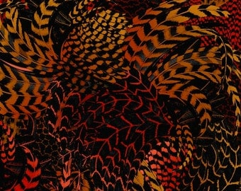 Rooster Feathers - Rise & Shine from Quilting Treasures - Full or Half Yard Rust Feathers