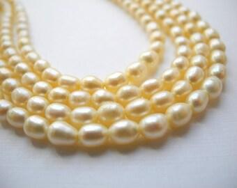 Freshwater Rice Pearls Fresh Water Pearls 6mm Pale Light Yellow  Pastel Yellow Full Strand