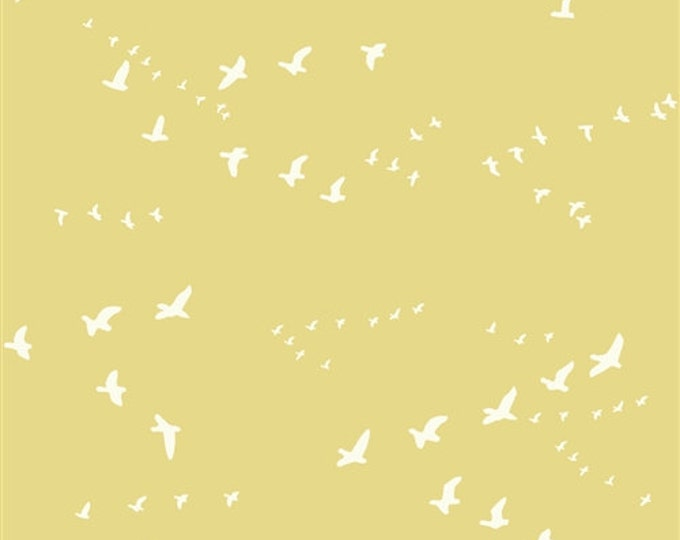 Organic DOUBLE GAUZE Fabric - Flight Sun