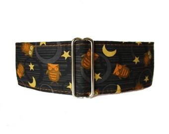 Halloween Martingale Collar, 2 Inch Martingale Collar, Owl Martingale Collar, Halloween Dog Collar, Owl Dog Collar