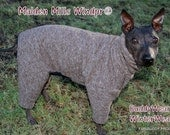 """Malden Mills Windpro® Fleece Suit  for Whippets, Italian Greyhounds, Chinese Crested, Hairless Terriers and  all small dogs up to 22"""""""