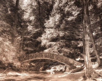 Bridge Photography-Woodland Wall Art-Fine Art Print-B&W Tinted Photograph-Living Room Art-Hocking Hills-Ohio Photography-24x36-Sepia Art