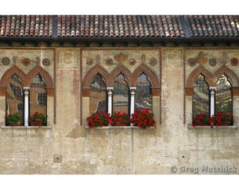 Fine Art Color Photography of a Row of Windows in Treviso Italy