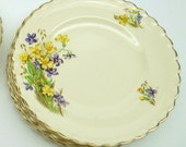 RESERVED for E Vintage J & G   Meakin Desert Dishes