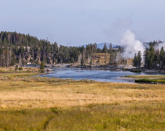 Yellowstone National Park - Hayden Valley photograph