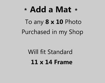 8 x 10 photograph Matted in 11 x 14 Mat