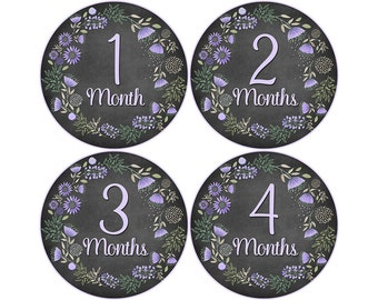 Monthly Baby Stickers, Girls First Year Photo Props, Baby Month Stickers, Baby Announcement, Monthly Photos, Baby Gift, Chalkboard (G239)