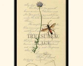 bug prints, Fine art prints, Wall art prints, Prints, Illustrations, Wall art, Posters, Botanical prints, Print sets, Giclee print