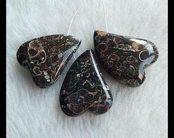 SALE,3 PCS Ammonite Fossil Pendant Bead SET,36.7