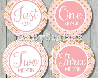 FREEGIFT Monthly Baby Stickers Baby Month Stickers Girl Month Stickers Monthly Stickers Monthly Milestone Sticker - Pretty Pink Gold Glitter