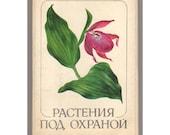 Russian Plants Art Illustrations /  Vintage Soviet 32 Art Postcards Set 1981 / Botanical Educational Cards