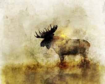 Happy Moose 01: Giclee Fine Art Print 13X19