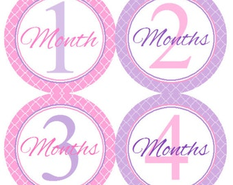Baby Month Stickers Pink & Purple Pretty Princess Monthly Belly Labels from 1 to 12 Months in Pink and Purple Quilted Patterns Set