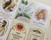Vintage Perfume Labels Stickers in Box Labels