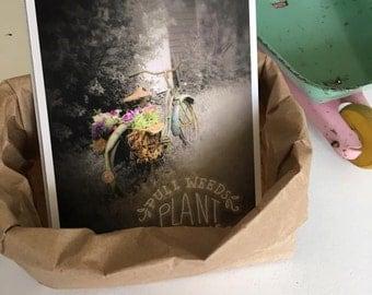 Garden Bike - Postcard