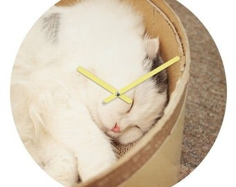Wall Clock ~ Cute Sleeping Fluffy Cat, pet animal unique gift, kitty cat lover gift for her, nursery art decor, unique housewarming gift