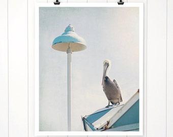 Pelican Print, Beach Decor, Beach Photography, Beach artwork, Beach art print, home decor, beach house art,  beach cottage decor, bird print