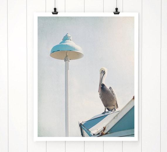 Pelican Print Beach Decor Beach Photography Beach Artwork