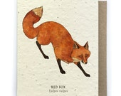 Red Fox Greeting Card - Plantable Seed Paper - Blank Inside