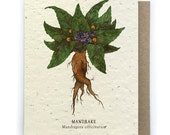 Mandrake Card - Plantable Seed Paper - Blank Inside