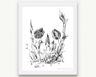 Skull Garden Print - Unmatted