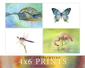 4x6 Prints - Buy 1 or more - Pick any Paintings by Amy Kirkpatrick