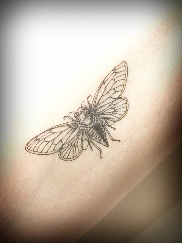 cicada temporary tattoo insect bug tattoo nature tattoo. Black Bedroom Furniture Sets. Home Design Ideas