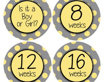 Belly Stickers, Pregnancy Announcement Sticker, Pregnancy Stickers, Pregnancy Photo Props, Baby Bump Sticker, Polka Dot Stickers (628P)