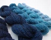 Handspun Gradient Yarn Set-  306m, 115g, DK Weight, Merino, Shetland, Alpaca, Alpaca, Frozen Pool