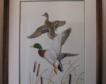 Ken Carlson Original Oil on Board Framed Mallard Hen & Drake Painting