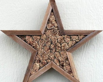DIY STAR Three Sizes Available Planter Living Vertical Wall Planter