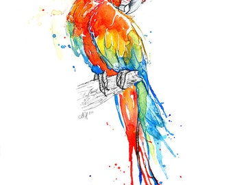 Fine Art Giclee Print: Scarlet Macaw Parrot (Watercolour painting)