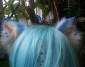 white and blue kitten ears