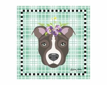 Pit Bull Pet Portrait Art Print Illustration Wrapped Canvas 12x12x.75 American Staffordshire Terrier