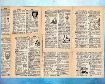 School Dictionary with Illustrations Vintage Paper Ephemera from 1925 Lot of 60 Antique Book scrapbooking collage pages decoupage SD2